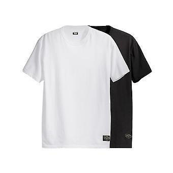 T-shirt homme levi's skate 2 pack tee 19452-0010