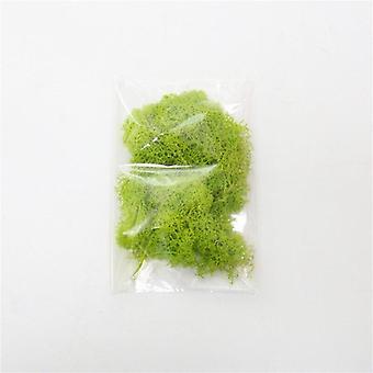 Artificial plants eternal life moss / garden home decoration wall diy flower material mini garden micro landscape accessories