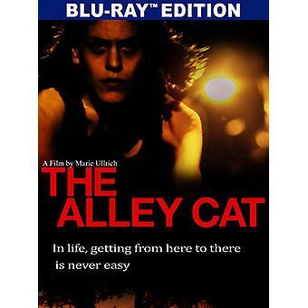 Import USA chat de gouttière [Blu-ray]