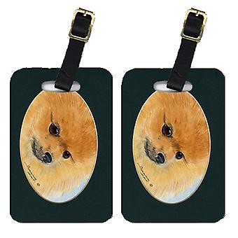 Carolines Treasures  SS8051BT Pair of 2 Pomeranian Luggage Tags