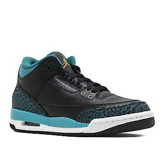 Air Jordan 3 Retro Gg - 441140-018 - Shoes