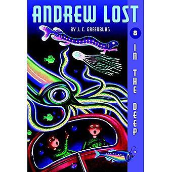 Andrew verloren #8: In der Tiefe (Andrew verloren)