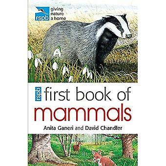 RSPB första bok av däggdjur