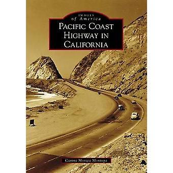 Pacific Coast Highway in California by Carina Monica Montoya - 978146
