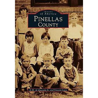 Pinellas County by A M de Quesada - Vincent G Luisi - 9780738587653 B