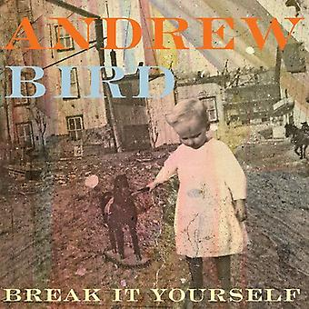 Andrew Bird - Break It Yourself-Deluxe Edition (CD/DVD) [CD] USA import
