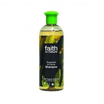Faith In Nature - Seaweed Shampoo 400ml