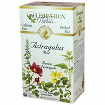 Celebration Herbals Organic Astragalus Root Tea, 24 Bags