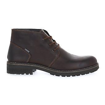 Igi & co nabuck caffe shoes