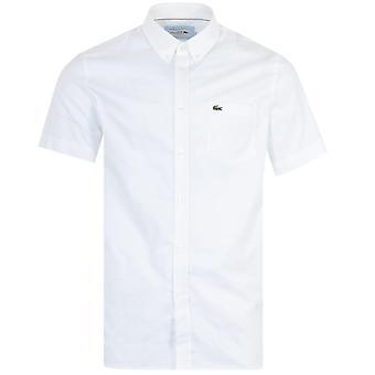 ラコステ半袖オックスフォードシャツ - ホワイト
