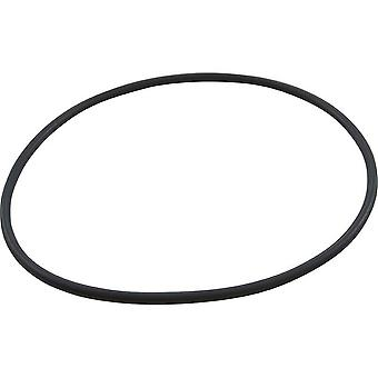 Speck Pumps 2920941210 185 x 6MM Lid O-Ring