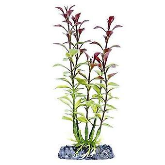 """Penn Plax Sinkers Blooming Ludwigia Aquarium Plant Red - 13"""" tall"""