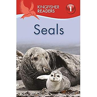 Kingfisher läsare: Tätningar (nivå 1 början att läsa)