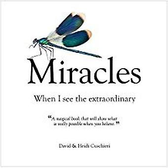 Miracles: When I See The Extraordinary 9781922161628