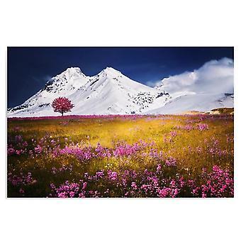 Deco Panel, Alpen