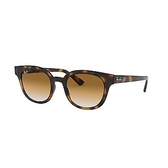 Ray-Ban RB4324 710/51 Havana/Clear Brown Gradient Sunglasses