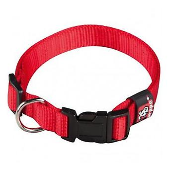 Arppe Basic Nylon Necklace Red Different Sizes for Dog