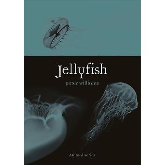Jellyfish by Peter Williams