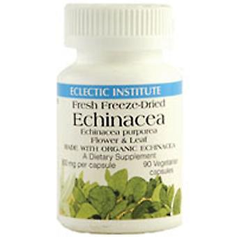 Istituto eclettico Inc Echinacea Purpurea Fiore & Foglia, 90 Caps