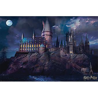 Harry Potter - Hogwarts Maxi Poster