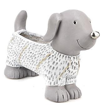 Widdop & Co. Nasta kivi vaikutus koiran istuttaja