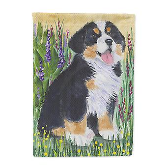 Carolines Treasures  SS8215-FLAG-PARENT Bernese Mountain Dog Flag