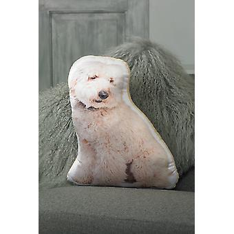 Adorable cream labradoodle shaped cushion