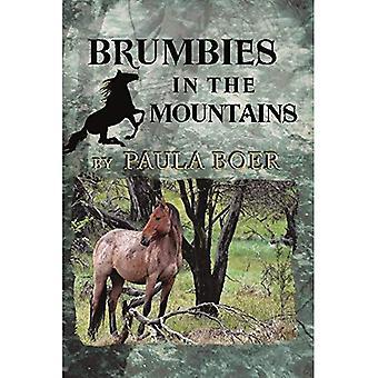 Brumbies in the Mountains (Brumbies)