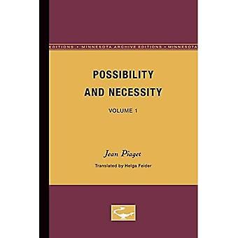 Possibility and Necessity, Vol. 1