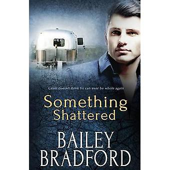 Something Shattered by Bradford & Bailey