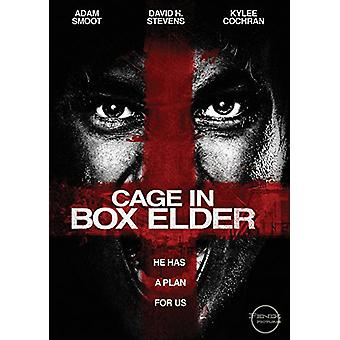 Cage in Box Elder [DVD] USA import