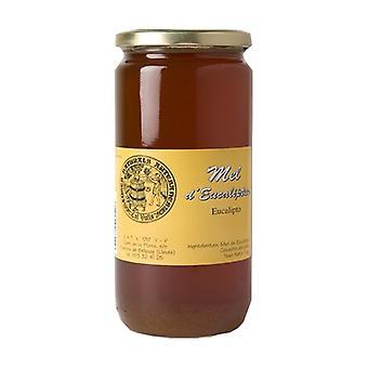 Eucalyptus Honey 1 kg