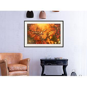 Pôster - Outono Dourado-60x40