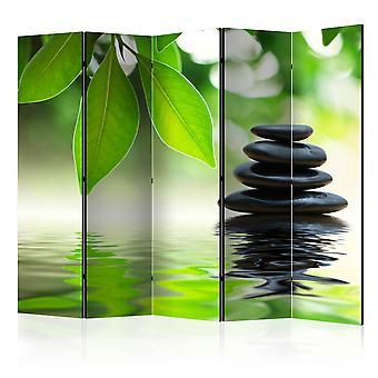 5-teiliges Paravent - Calm II [Room Dividers]