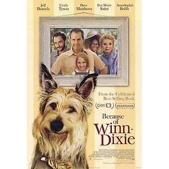 Because of Winn Dixie Movie Poster (11 x 17)