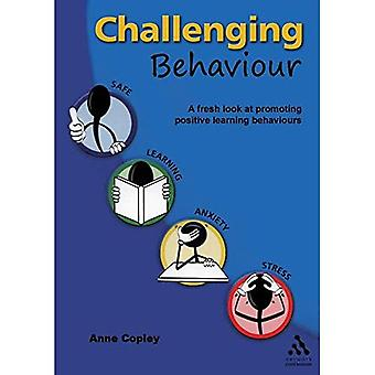 Challenging Behaviour: A Fresh Look at Promoting Learning Behaviours [Illustrated]