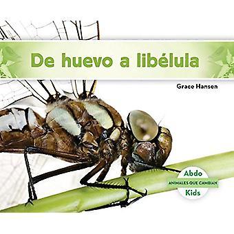 de Huevo a Libélula (Becoming a Dragonfly) by Grace Hansen - 9781624