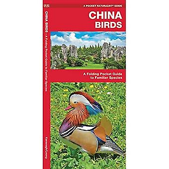 China Birds: A Folding Pocket Guide to Familiar Species