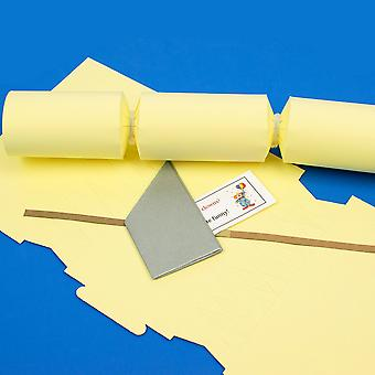 Single Pale Pastel Yellow Make & Fill Your Own Reciclable Christmas Cracker Kit Single Pale Pastel Yellow Make & Fill Your Own Reciclable Christmas Cracker Kit Single Pale Pastel Yellow Make & Fill Your Own Reciclable Christmas Cracker Kit