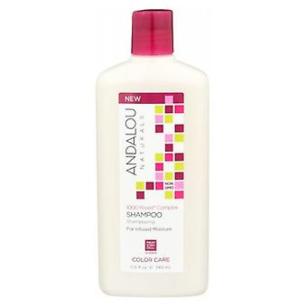 Andalou Naturals 1000 Roses Complex Color Care Shampoo, 11.5 Oz