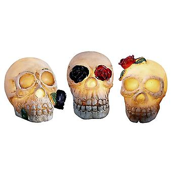 3x Skull Lanterns, Decoration - Halloween