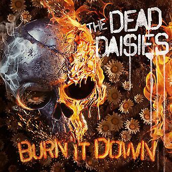 Dead Daisies - Burn It Down [CD] USA import