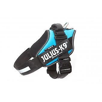 Julius K9 IDC Aquamarine Harness Größe 4 (Hunde , Für den Spaziergang , Geschirr)