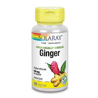 Solaray Orgaincally Grown Ginger Root Vcaps 100 (85207)