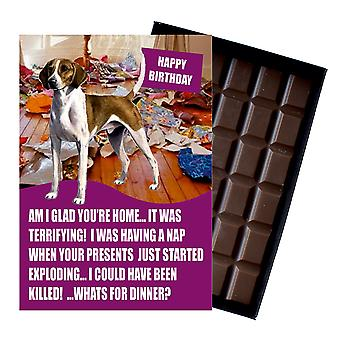 Foxhound Funny Birthday Gifts For Dog Lover Boxed Chocolate Greeting Card Present