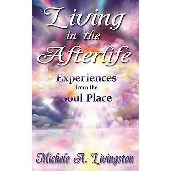 Living in the Afterlife  Experiences from the Soul Place by Livingston & Michele A.
