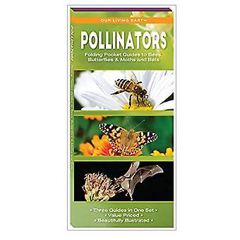 Pollinators: Folding Pocket Guides to Bees, Butterfliesa� & Moths and Bats (Our Living Earth)