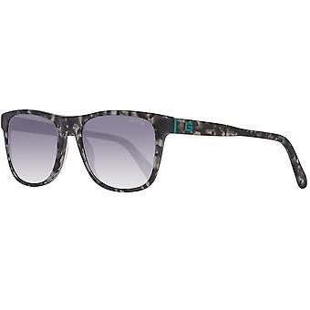Grey Men Sunglasses