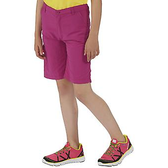 Regatta drenge & piger Sorcer justerbar Stretch Walking Shorts
