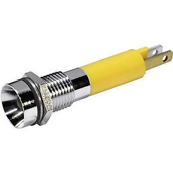 CML 19070352 LED-merkkivalo Keltainen 24 V DC 19070352